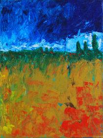 blühende Toscana von Karin Stein
