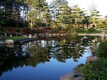 japanese garden by Anne Seltmann