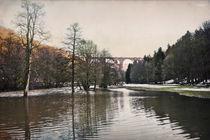 Hochwasser von Stefanie Härtwig