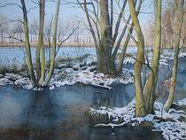 Winter am Pumpenteich by Kerstin Birk