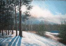 Kiesgrube im Schnee  by Kerstin Birk