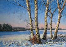 Wintersonne von Kerstin Birk