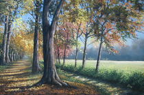 Herbstliche Allee in Seerhausen by Kerstin Birk
