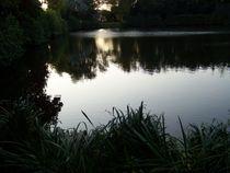 Naturlehrpfad im Ferienpark Blandorf Wichte von petra ristau