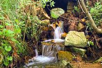 Kleiner Wasserfall unter grünen Blättern  von Ulrike Haberkorn