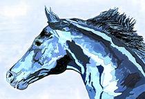 Freiheit in Blau von Sandra Vollmann.W.