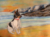 Bucht von Mesquida von Sandra Vollmann.W.