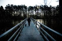 Winterspaziergang von Jakob Wilden