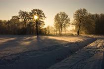 Winter am Niederrhein von Jakob Wilden