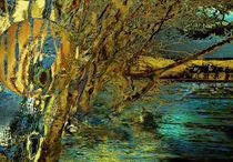 Hochwasser in den Auen by artesigno