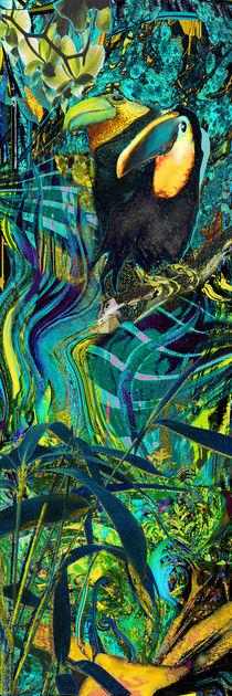 Kakadus by artesigno