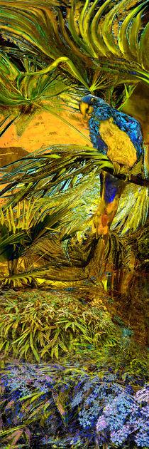 Papagei Neugierei von artesigno