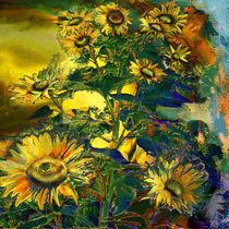 Sonnenblume von artesigno
