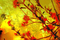 Frühlingserwachen by artesigno