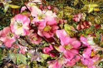 Blütensinfonie by artesigno