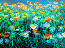 Blumenwiese by artesigno