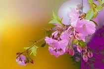 Kirschblütenzweig von artesigno