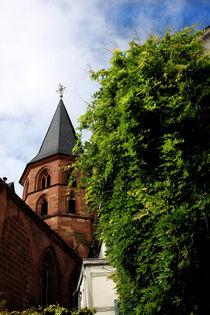 Stiftskirche Kaiserslautern by lizcollet