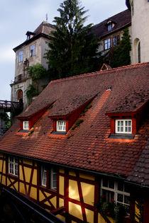 Meersburger Burg und Mühle von lizcollet