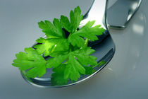 Parsley Proudly Presented von lizcollet