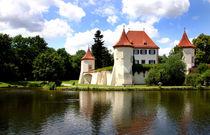Schloss Blutenburg mit See by lizcollet