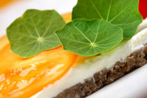 Vegetarische Brotzeit frisch aus dem Garten by lizcollet