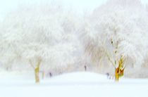 Winterlandschaft  von Peter Norden
