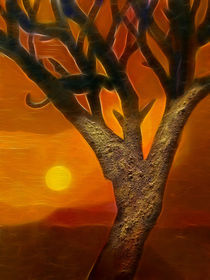 Afrikas Sonne von Lutz Baar