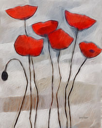 Mohn by Lutz Baar