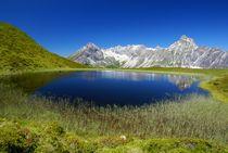 Bergwelt von Johannes Netzer