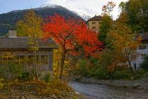 Herbst by Johannes Netzer