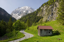 Bergwelt by Johannes Netzer