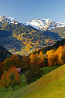 Herbst in den Bergen by Johannes Netzer