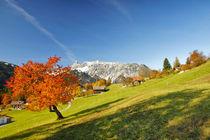Herbst in den Bergen von Johannes Netzer