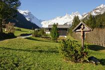 Frühling in den Bergen von Johannes Netzer