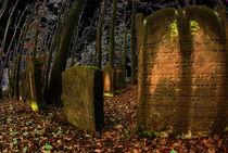 Friedhof by Harald Kraeuter