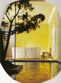 Licht und Schatten von orina nissenbaum
