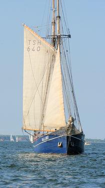 Segelschiff 11 von martinm