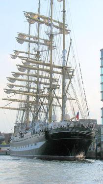 Segelschiff 10 von martinm