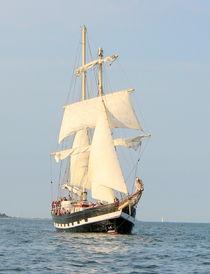 Segelschiff 8 von martinm