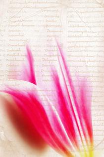 Schreib mal wieder by Markus Wegner