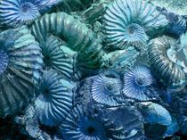 Meeresrauschen by Angela Parszyk