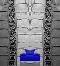 Blauer Salon by Angela Parszyk
