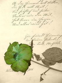 Poesie von Angela Parszyk