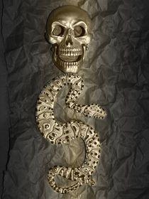 Schlangengift by Angela Parszyk