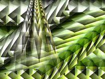 Dschungel 3 von Angela Parszyk