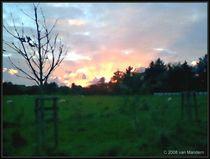 Sunrise by Gerd van Mandern