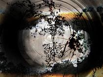 Meditation von Andrea Schlomm