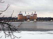 Moritzburg im Winter by Christoph E. Hampel