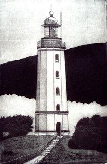Dornbusch by Dieter Tautz